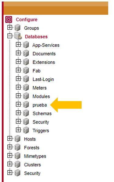 Seleccionar bases de datos prueba
